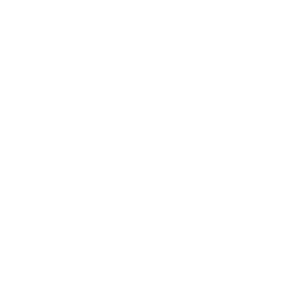 Meet ZEV Of Taiwan — Tesla Fleet To Help Save The Planet